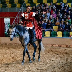 Шоу «Рыцарский турнир» 2017