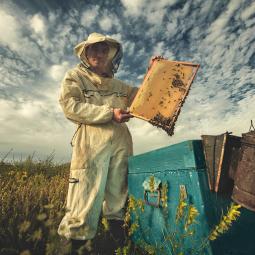 Всероссийская фотовыставка «Россия. Идеи для путешествий»