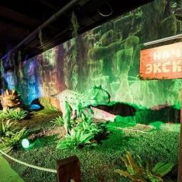 Выставка роботизированных динозавров в Сочи Парке