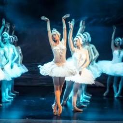 Балет «Лебединое озеро» в Зимнем театре 2018