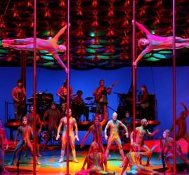 Шоу Cirque du Soleil «Totem» 2017