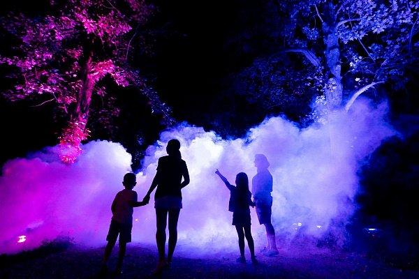Ночной маршрут «Оживший парк» впарке «Южные культуры» 2020