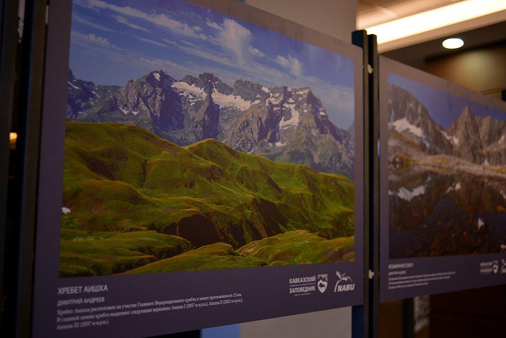 Выставка «Природа Кавказского заповедника»