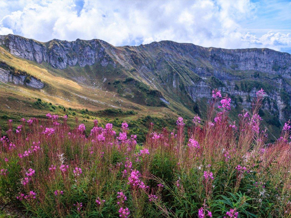 Эко-тропы горного курорта «Горки Город»