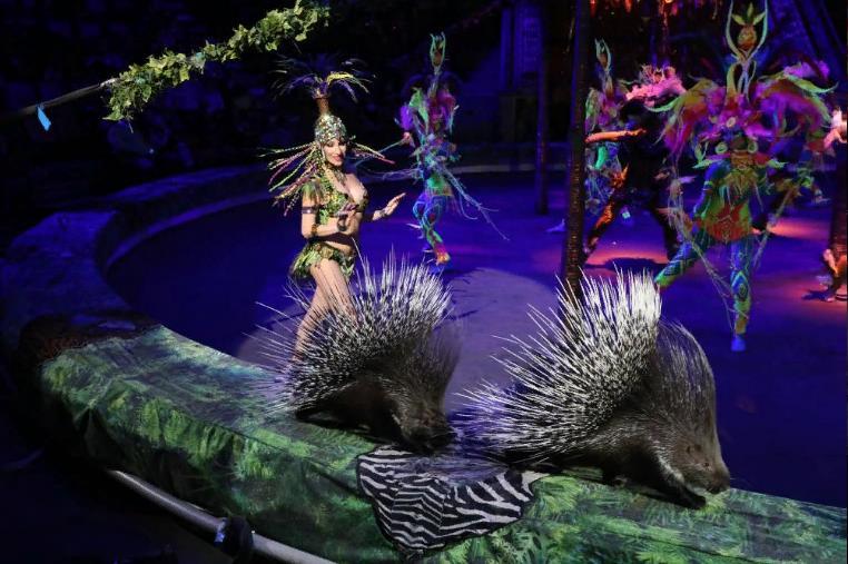 Цирковое шоу «Бурлеск» 2021