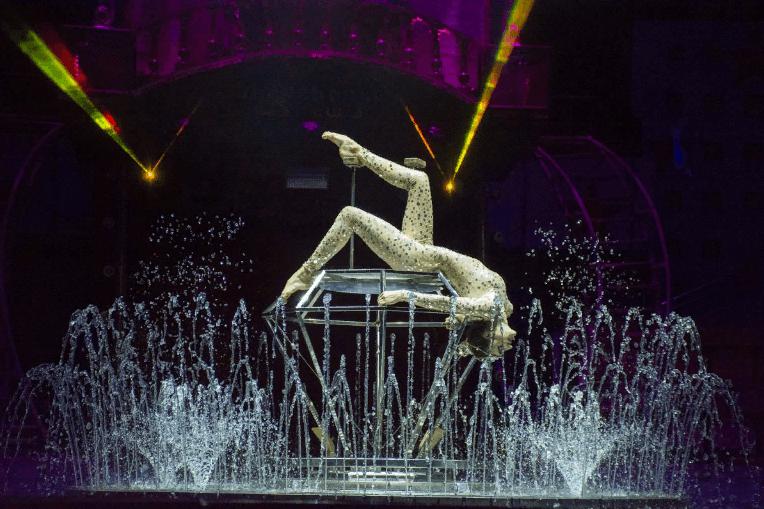 Цирковая программа наводе «Шевченко-Шоу» 2019