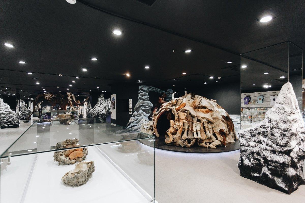 Интерактивная выставка «Гиганты вечной мерзлоты»