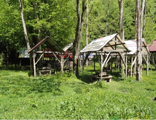 Пикниковая зона «Бархатная поляна»