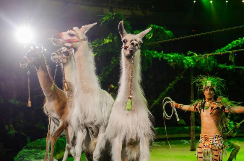 Цирковое шоу «Королевский цирк Гии Эрадзе» 2018