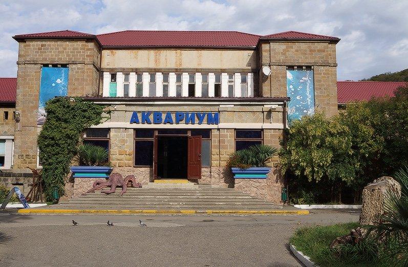 Сочинский «Аквариум иМорской зоопарк»